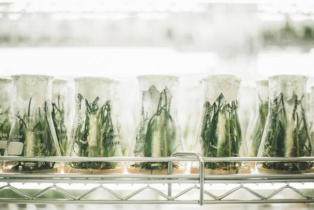Biotech plants